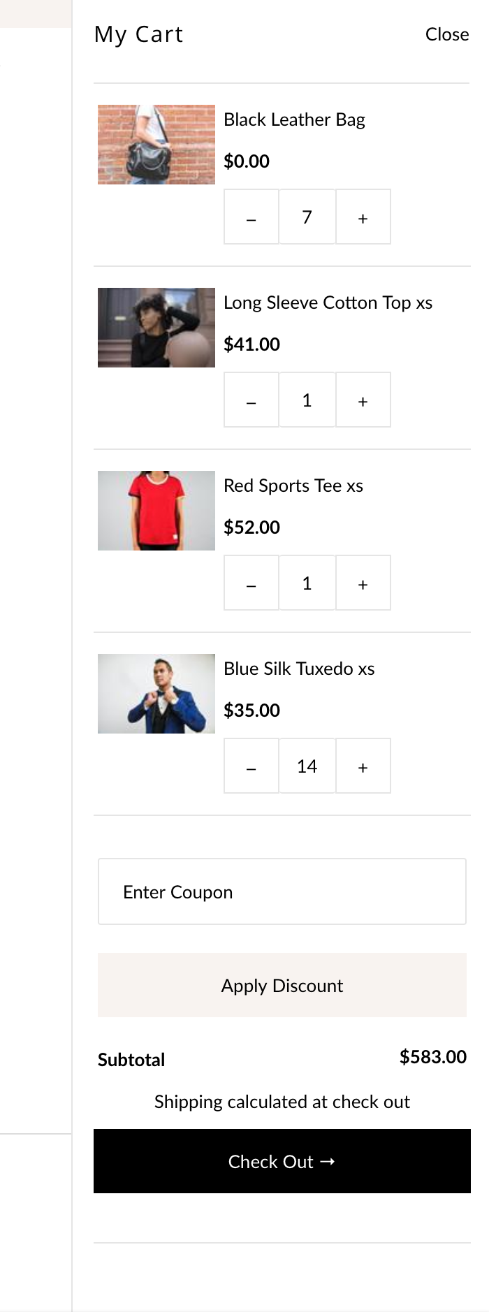 Icon theme for Shopify - carter coupon field in cart