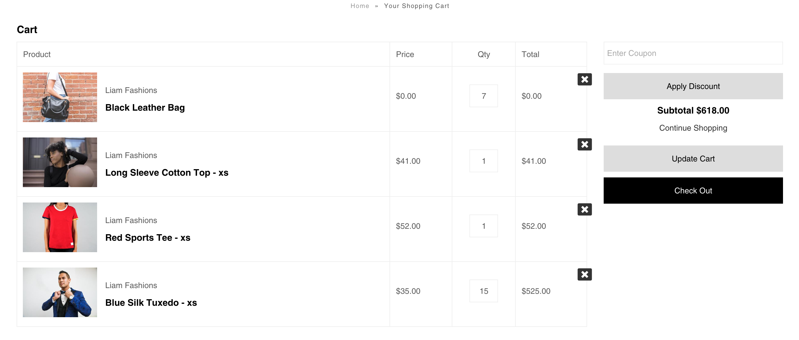 Vantage theme for Shopify - carter coupon field in cart